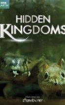 Gizli Krallık – Hidden Kingdom 1,2,3 Bölüm (2014) Türkçe Dublaj İzle