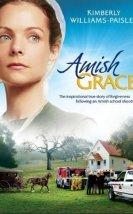 Amishlerin Merhameti İzle