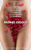 Kiralık Aşık – Fading Gigolo (2013) Türkçe Dublaj İzle