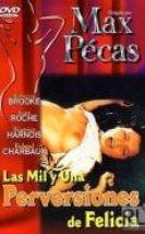 Les mille et une perversions de Felicia Erotik Film izle