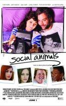 Sosyal Hayvanlar izle