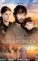 Sugarcreek'te Sevgiyi Bulmak 2014 Türkçe Dublaj izle