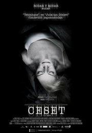 Ceset 2013 – El cuerpo izle