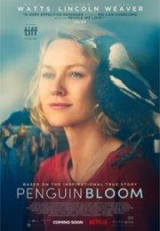 Penguin Bloom izle