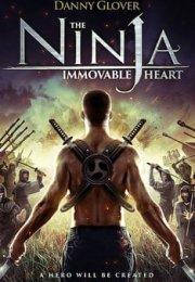 Ninjanın Kalbi 2014 Türkçe Dublaj HD izle