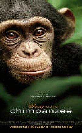 Chimpanzee – Şempanze İzle