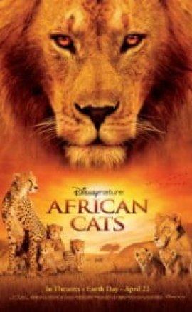 Afrika Kedilieri İzle