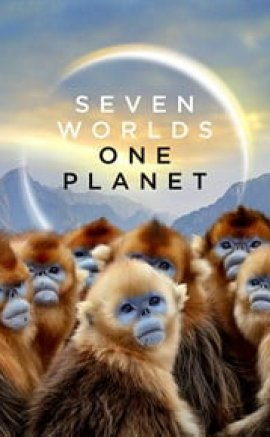 Seven Worlds, One Planet izle