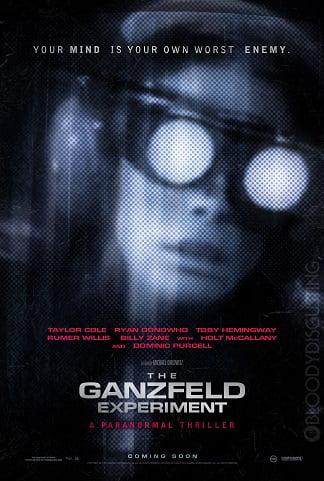 Ganzfeld Deneyi
